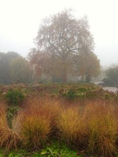 Herfst in Lyndon Park